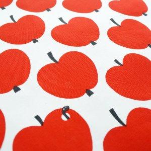 画像2: 大きなリンゴ【シューズバッグ】材料セット 入園入学 中厚手生地+裏地[n][u]